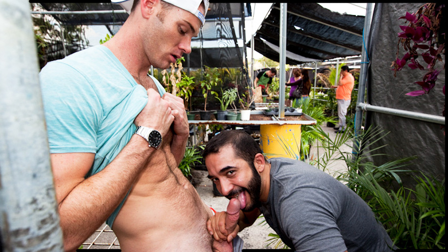 Ass For Grass!! outinpublic out in public places gay sex videos